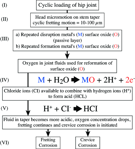 Figure 14b. Electrochemical reactions involved in mechanically-assisted crevice corrosion (MACC: redrawn from data in Gilbert et al, 1997). Cyclic loading is a necessary hip function and the resulting micromotion can disrupt the protective oxide film on metal surfaces. Ideally this will quickly reform, the metal combining with oxygen from the local environment and in the process releasing hydrogen and negatively-charged electrons. Under adverse conditions, the fretting continues, the oxygen concentration is depleted, and the formation of a protective oxide layer is compromised. In addition the surrounding environment is becoming more acidic as the hydrogen ions recombine with chlorine ions to form hydrochloric acid, thereby promotion dissolution of the metal surface.  (Gilbert et al 1997) (Courtesy of Ian Clarke)