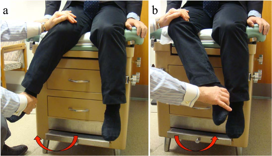Fig. 1 : Maneuver of the pendulum test. The internal rotation (a) and external rotation (b) of hip joint under the flexion at 90 degrees of the hip and knee is demonstrated.
