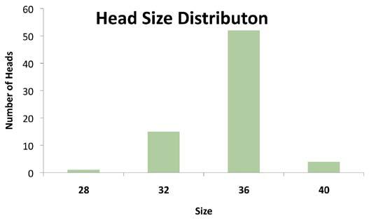 Figure 3a – femoral head size distribution